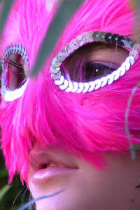 Fuschia Feather Mask - SPLENDOR IN THE LEMONGRASS - Crop - Blog - Sm